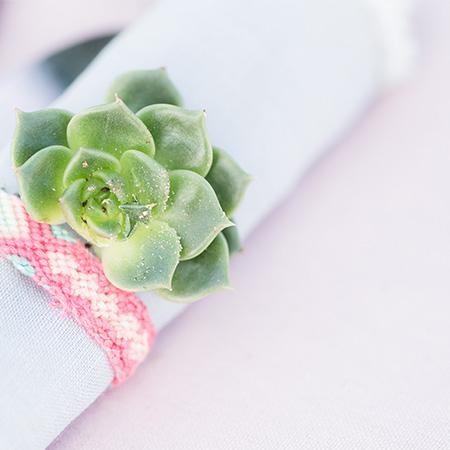 stijlvolle servetdecoratie met mini vetplantje